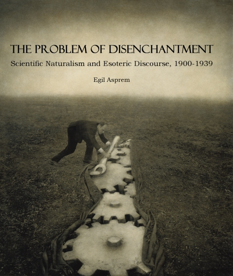 Problem of DIsenchantment cover