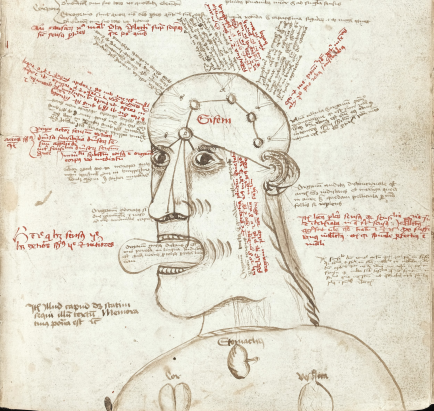 The human cognitive system according to a late-medieval scribe. Illustration to a manuscript copy of Aristotle's De Anima (1472-1474), courtesy of Wellcome Collection (MS 55).